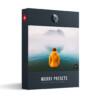 Moody Lightroom Presets and Profiles Presetpro.com